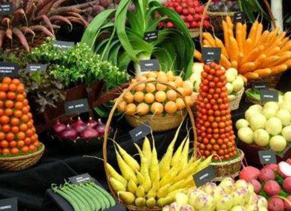 نمایشگاه محصولات غذایی ارگانیک